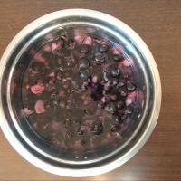 Suco de jabuticaba fermentado (com casca e caroço)