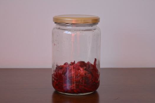 hibisco fermentando