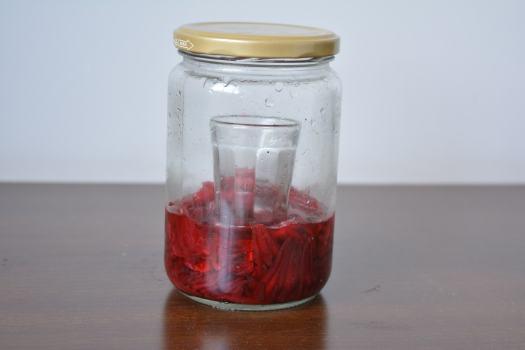 Hibisco fermentado