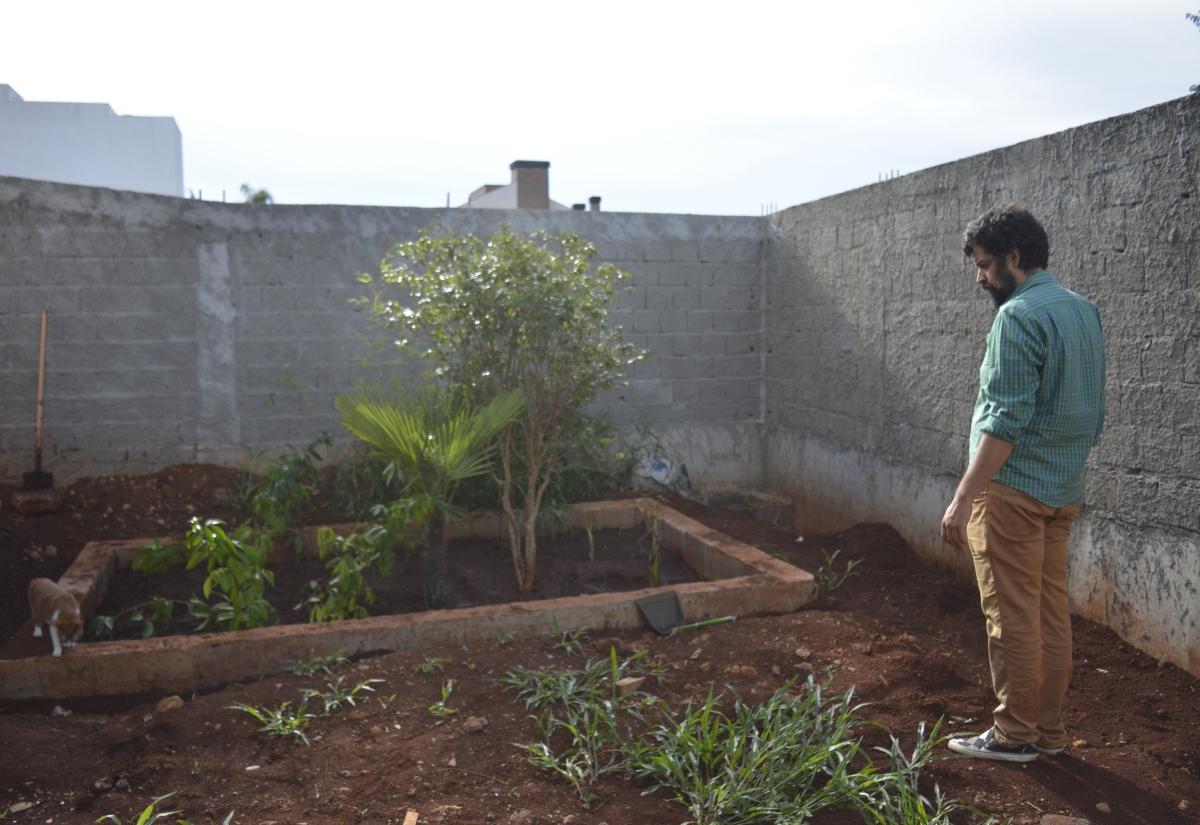 Plantas comestíveis para se usar no Tanque ou Bacia de Evapotranspiração